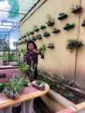 Hoạt động Stem tái chế của thầy và trò trường tiểu học Lê Lợi